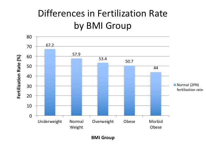 Higher BMI May Cause Problems for IVF